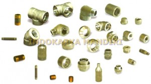 PT Indokarya Mandiri_Product_Forged steel socket welding-Screw fitting-Pipe nipple_S